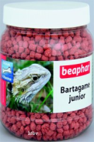 Bartagame junior