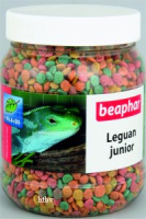 Leguane junior
